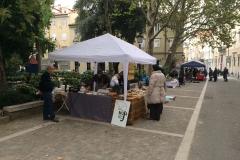 Voci in piazza 2016